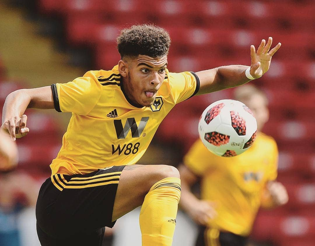 morgan-gibbs-white